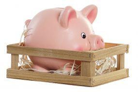 MONEY BOX STONEWARE MDF 15X11,6X12 LITTLE PIG PINK