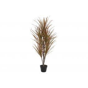 PLANT PVC 72X55X133 DRACAENA