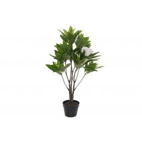 PLANT PVC 57X55X90 MAGNOLIA