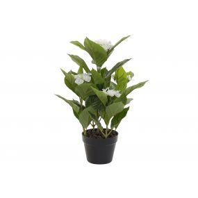 PLANT PVC 47X45X63 HYDRANGEA