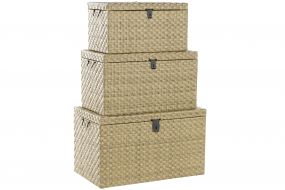 TRUNK SET 3 SYNTHETIC RATTAN METAL 79X47X47