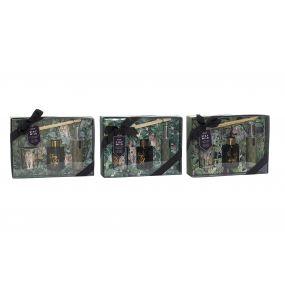 FRAGANCE DIFFUSER SET 3 GLASS 24,5X6X17 60 ML. / 3
